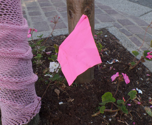 orienteering flag