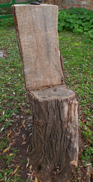 trunk seat